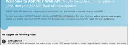 ASP.NET Web API Help Page