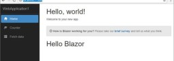 Browser + Razor = Blazor!