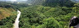 Bukit Langara